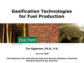 Gasification Technologies for Fuel Production