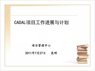 CADAL 项目工作进展与计划