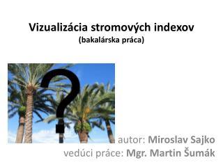 Vizualizácia stromových indexov (bakalárska práca)