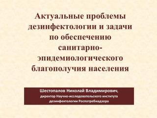 Шестопалов Николай Владимирович ,  директор Научно-исследовательского института