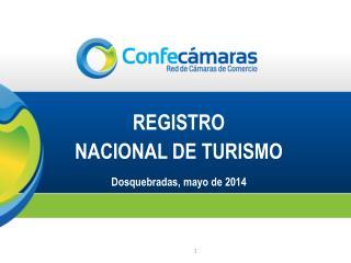 REGISTRO  NACIONAL DE TURISMO Dosquebradas, mayo de 2014