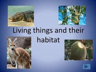 Living things and their habitat