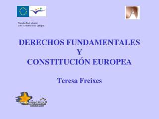 EL PROCESO DE CONSTITUCIONALITZACIÓN  DE LA UNIÓN EUROPEA Y LOS DERECHOS FUNDAMENTALES