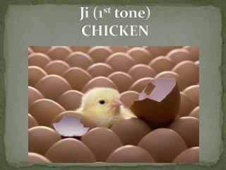 Ji  (1 st  tone)  CHICKEN
