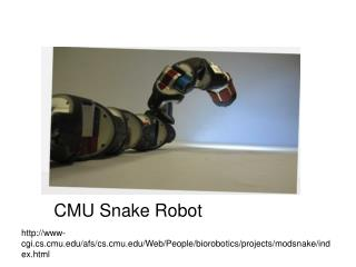 www-cgi.cs.cmu/afs/cs.cmu/Web/People/biorobotics/projects/modsnake/index.html