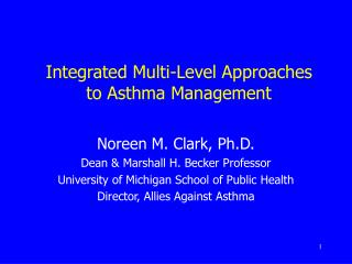 Integrated Multi-Level Approaches  to Asthma Management