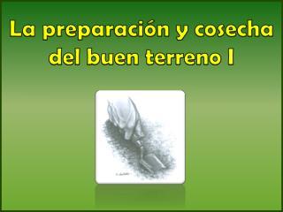 La preparación y cosecha del buen terreno I