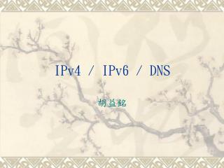 IPv4 / IPv6 / DNS
