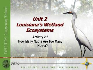 Activity 2.2 How Many Nutria Are Too Many Nutria
