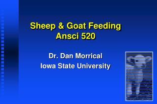 Sheep  Goat Feeding Ansci 520