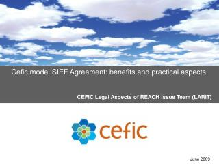 Cefic model SIEF Agreement: benefits and practical aspects