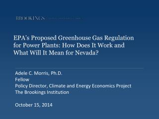 Adele C. Morris, Ph.D. Fellow   Policy Director, Climate and Energy Economics Project