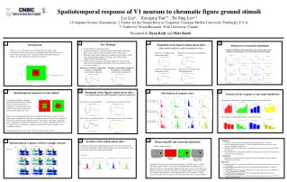 Spatiotemporal response of V1 neurons to chromatic figure ground stimuli