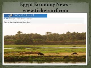 Egypt Economy News - www.tickersurf.com