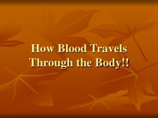 How Blood Travels Through the Body!!