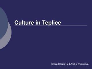 Culture in Teplice