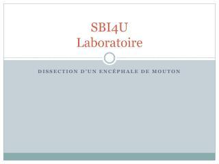 SBI4U Laboratoire