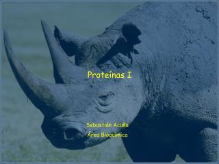 Proteínas I