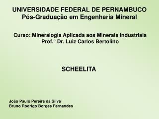 UNIVERSIDADE FEDERAL DE PERNAMBUCO P�s-Gradua��o em Engenharia Mineral