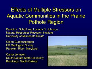 Effects of Multiple Stressors on Aquatic Communities in the Prairie Pothole Region