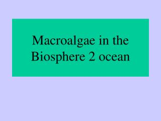 Macroalgae in the Biosphere 2 ocean