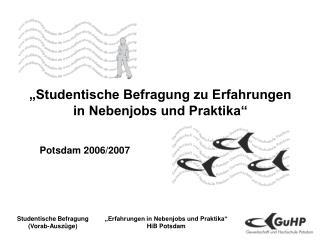 """""""Studentische Befragung zu Erfahrungen  in Nebenjobs und Praktika"""""""