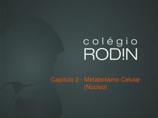 Capítulo 2 - Metabolismo Celular (Núcleo)