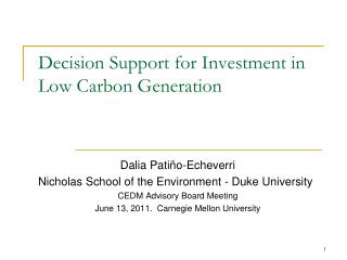 Decision Support for Investment in Low Carbon Generation