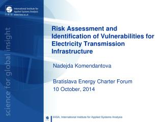 Risk Assessment and Identification of  Vulnerabilities for Electricity Transmission Infrastructure