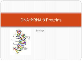 DNA RNAProteins