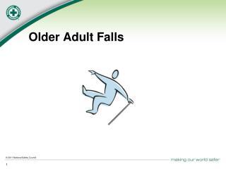Older Adult Falls