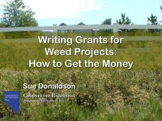 Writing Grants for  Weed Projects:   How to Get the Money