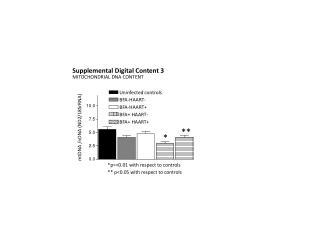 MITOCHONDRIAL DNA CONTENT