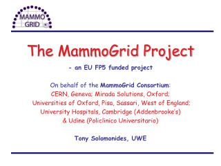 The MammoGrid Project