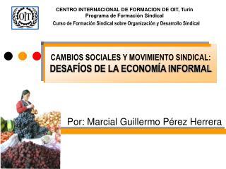 CAMBIOS SOCIALES Y MOVIMIENTO SINDICAL:  DESAF OS DE LA ECONOM A INFORMAL