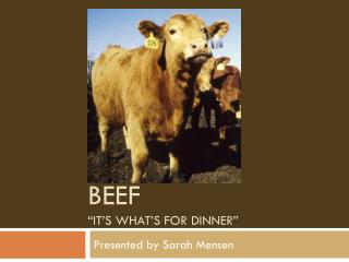 "Beef ""it's what's for dinner"""