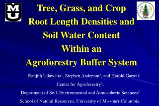 Tree, Grass, and Crop  Root Length Densities and  Soil Water Content  Within an  Agroforestry Buffer System