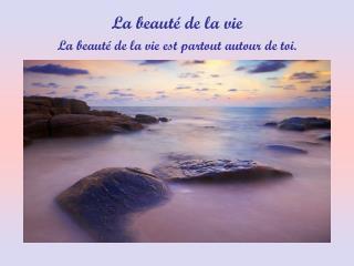 La beaut  de la vie est partout autour de toi.