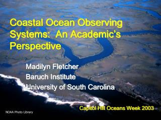 Coastal Ocean Observing Systems:  An Academic's Perspective