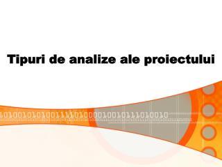 Tipuri de analize ale proiectului