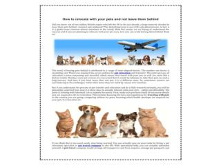 Did you find your pet-friendly  Pets Travel and Export Servi