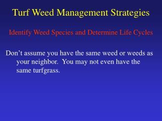 Turf Weed Management Strategies
