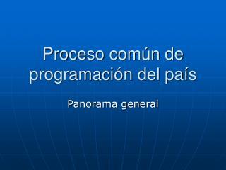 Proceso común de programación del país