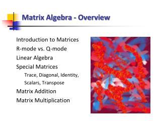 Matrix Algebra - Overview
