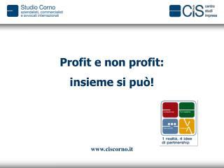 Profit e non profit:  insieme si pu�!