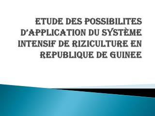 ETUDE DES POSSIBILITES D'APPLICATION DU SYSTÈME INTENSIF DE RIZICULTURE EN REPUBLIQUE DE GUINEE