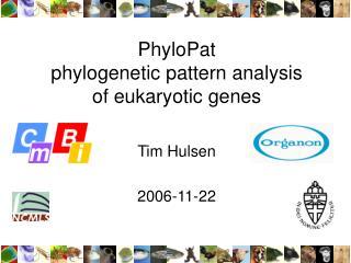 PhyloPat phylogenetic pattern analysis of eukaryotic genes