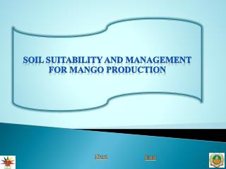 Soil suitability and management for mango production