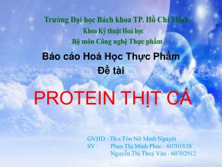 B�o c�o Ho� H?c Th?c Ph?m ?? t�i