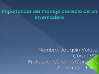 Nombre: Joaquín Veloso Curso: 6ºA Profesora: Carolina  González Asignatura: Taller